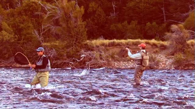 video peche truite argentine