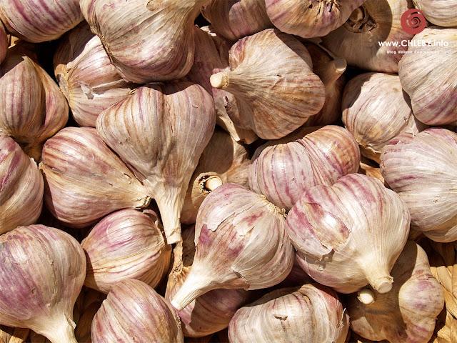 O tym jak hodować czosnek w domu i trochę inne placki ziemniaczane z zielonymi pędami czosnku