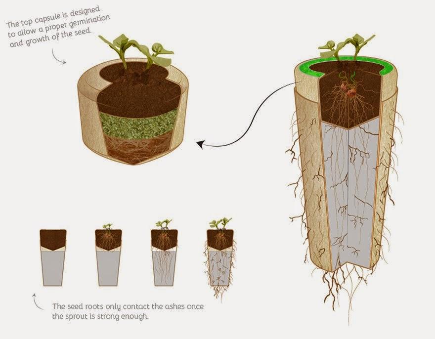 Urna Bios, Maceteros para Incineracion
