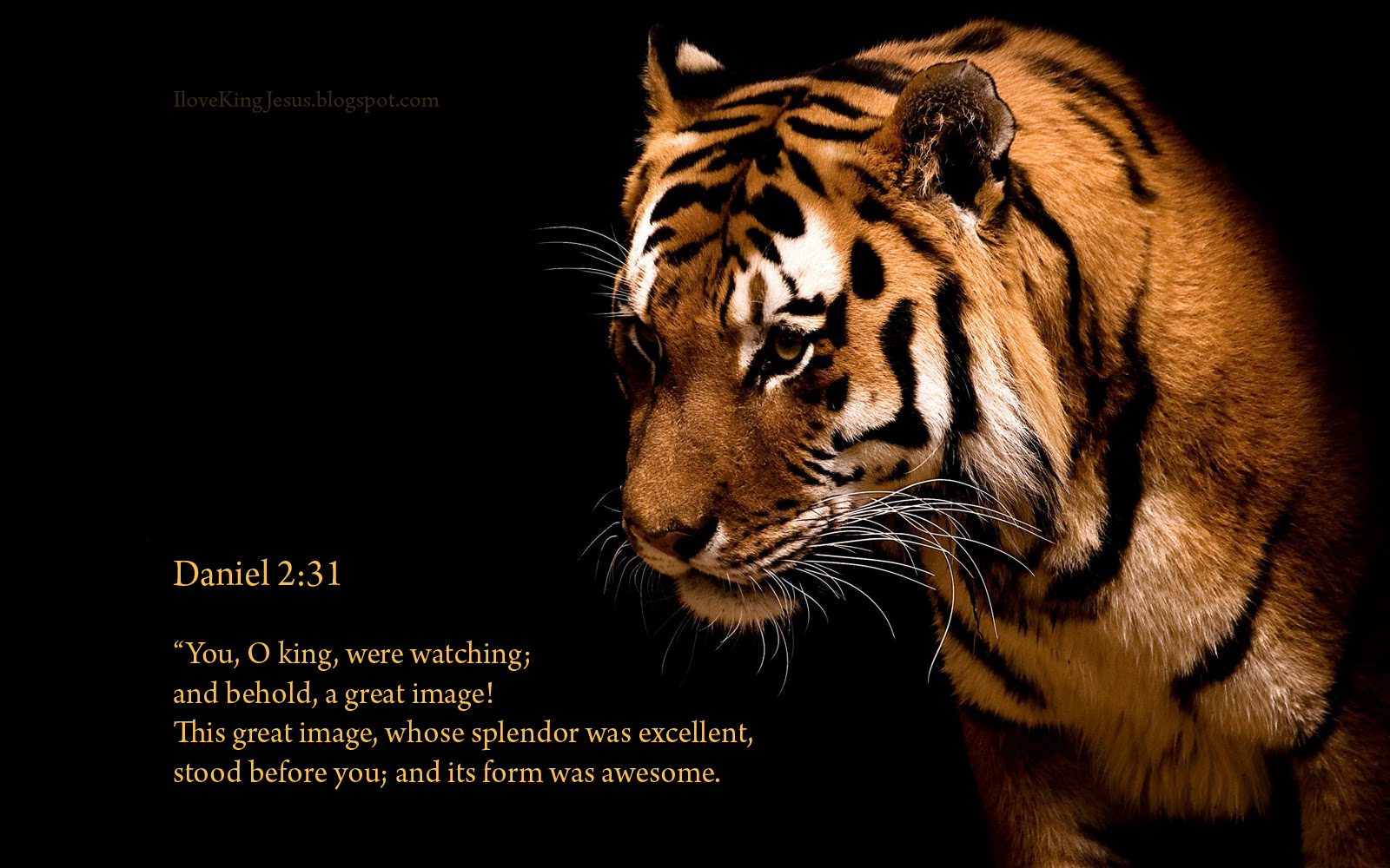 I Love King Jesus Christian Wallpapers