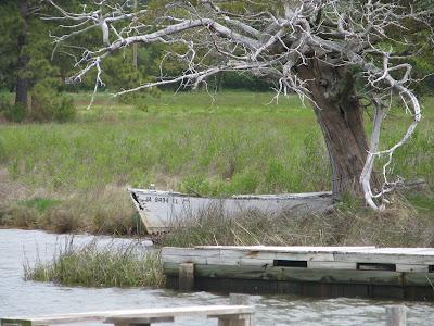 Edwards Creek, Gwynns Island Mathews County, Virginia Photo