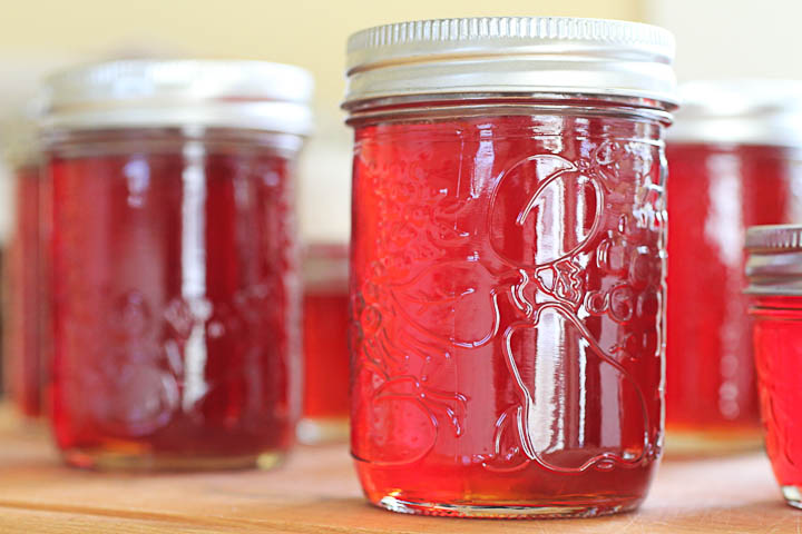 twenty-two pleasant: more quince jelly
