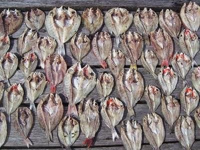 cara membuat ikan asin