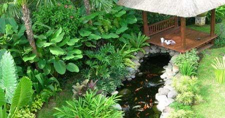 desain taman dan kolam ikan minimalis dalam rumah | design