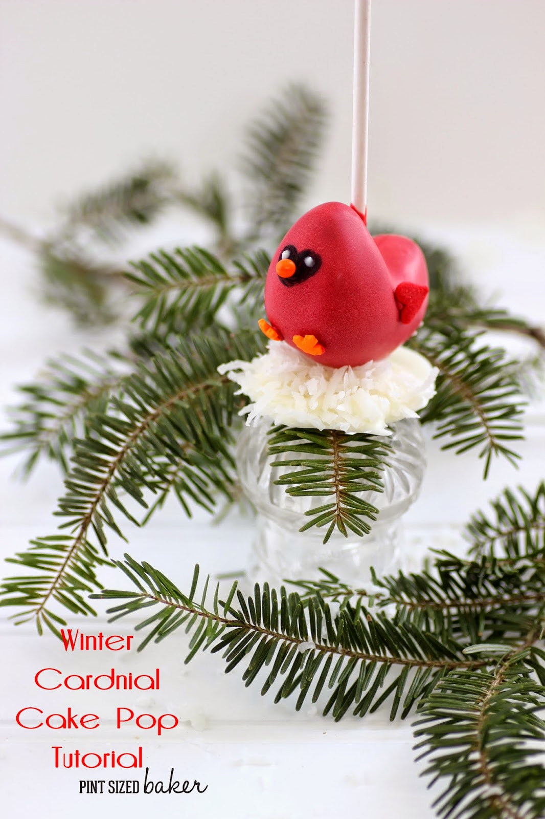 Fat little Winter Cardinal Cake Pops sitting on a bed of snow. Learn how to make them!