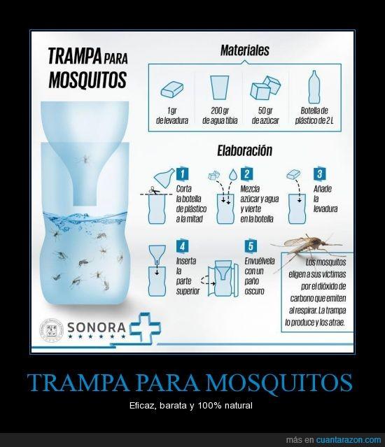 La muralla grupo margal la batalla contra los mosquitos - Como ahuyentar a los mosquitos ...