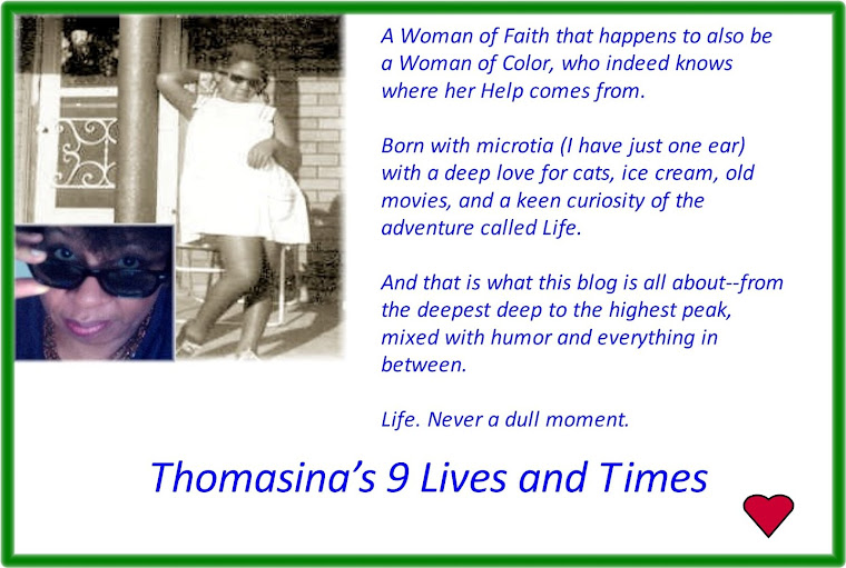 Thomasina&#39;s 9 Lives and Times