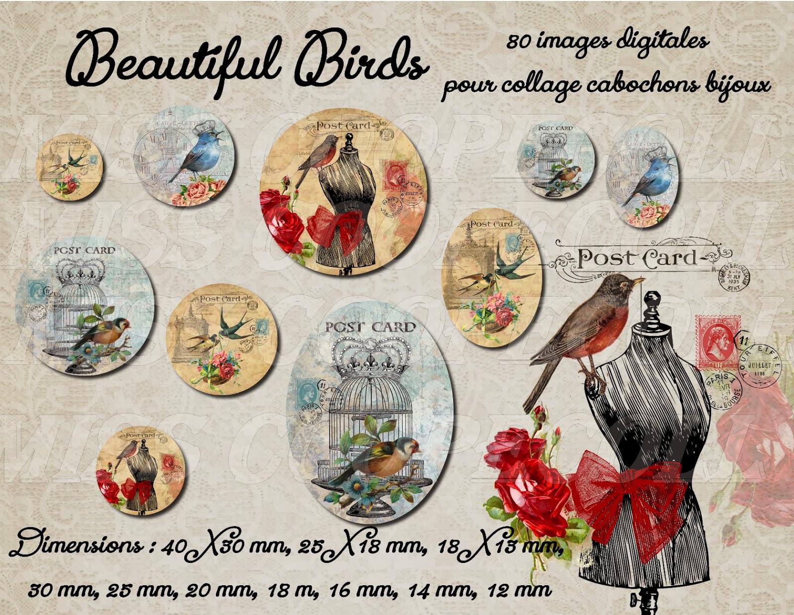http://www.alittlemarket.com/loisirs-creatifs-scrapbooking/nouveaute_80_images_pour_collage_digital_cabochons_bijoux_beautiful_birds_envoi_par_mail-6915065.html