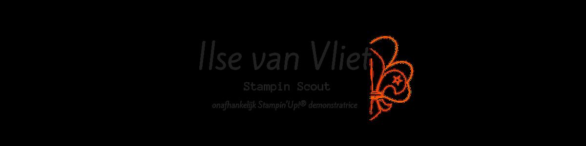 Ilse van Vliet