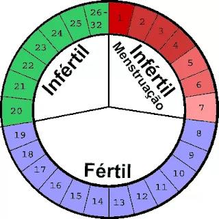 Tabela dos dias férteis - calcular dia fértil - ovulação