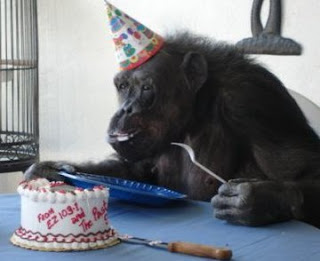 La Mona Chita celebrando su cumpleaños