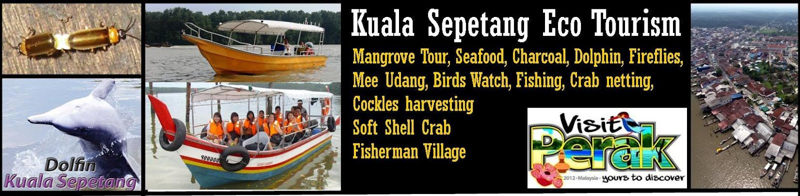KUALA SEPETANG ECO TOURISM Mangrove Tour, Bird Watch, Fireflies Sighting and Lucky Dolphin
