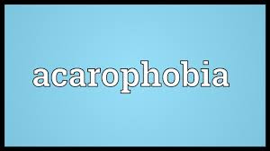 acarophobia