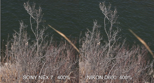nikon d600 nex-7 metabone speed booster comparison