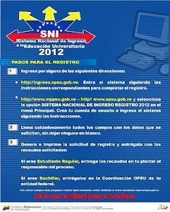 Pasos a seguir para formular el registro en el SNI