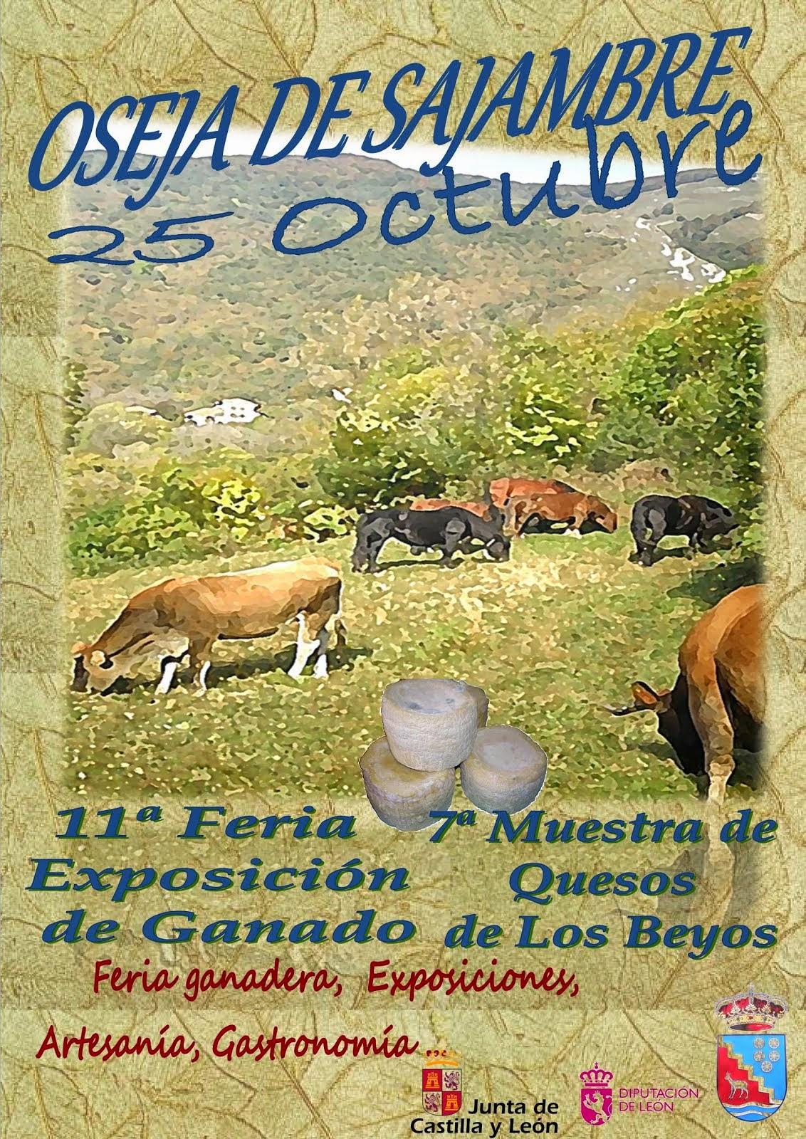 Feria 2.014