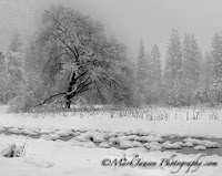 Yosemite Valley photography workshop http://www.jansenphotoexpeditions.com/Pages/YosemiteInWinter.aspx