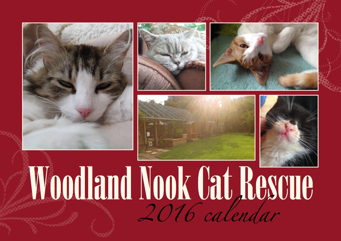 PURCHASE A WOODLAND NOOK CAT CALENDAR