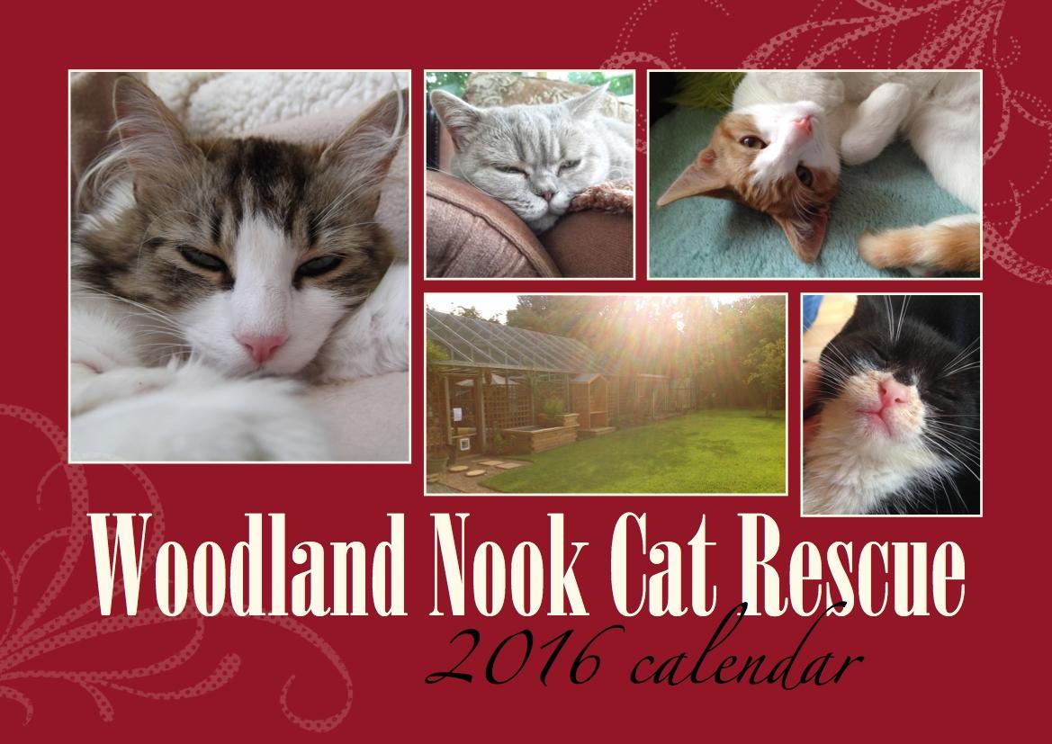 PURCHASE A WOODLAND NOOK CAT CALENDAR
