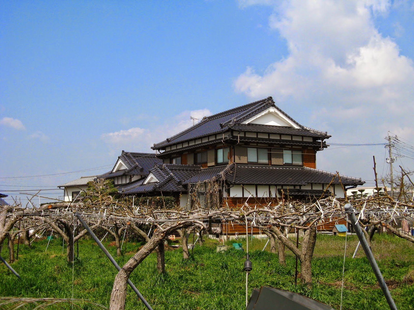 WWOOF Japan the family home
