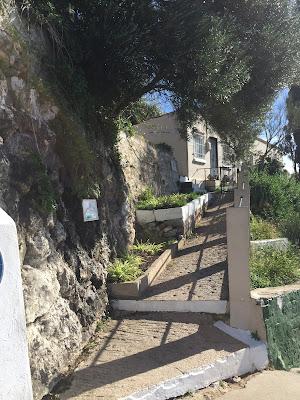 The start of the Med Steps