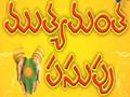 Mutyamanta Pasupu Telugu Serail