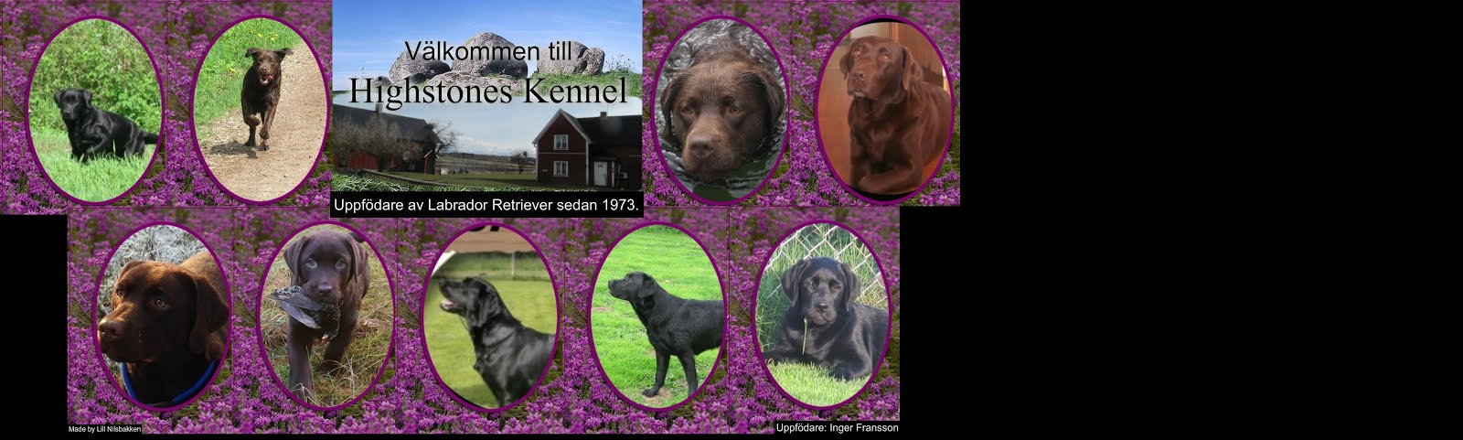 Highstones Kennel