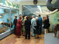 Харьковский Музей природы: экскурсионно-лекционная работа