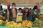 Videos Mercados Campesinos