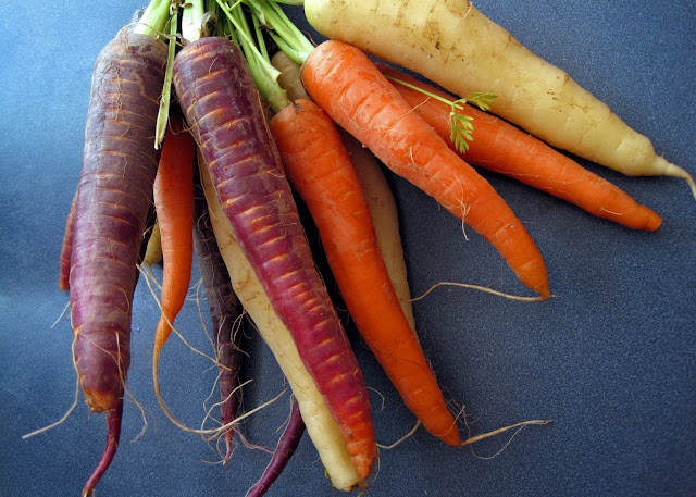 white carrots and purple carrots (black carrots)