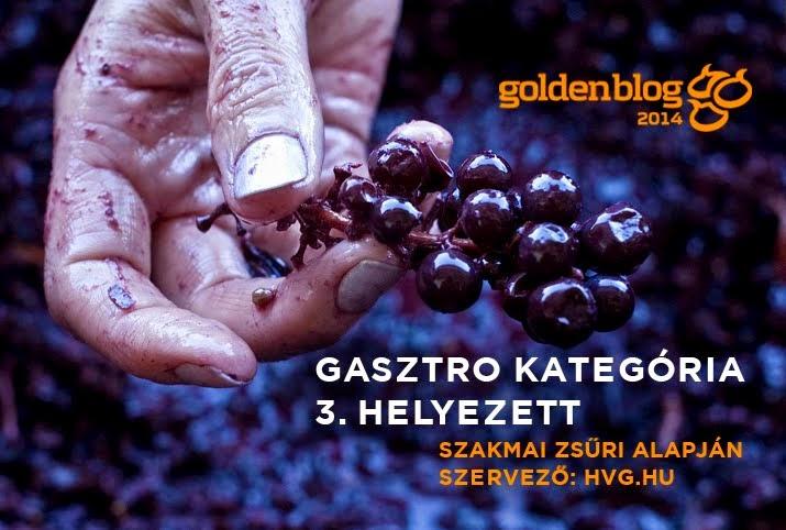 WineArt Culture, a Goldenblog 3. helyezettje