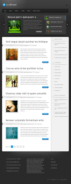 Polished WordPress Theme