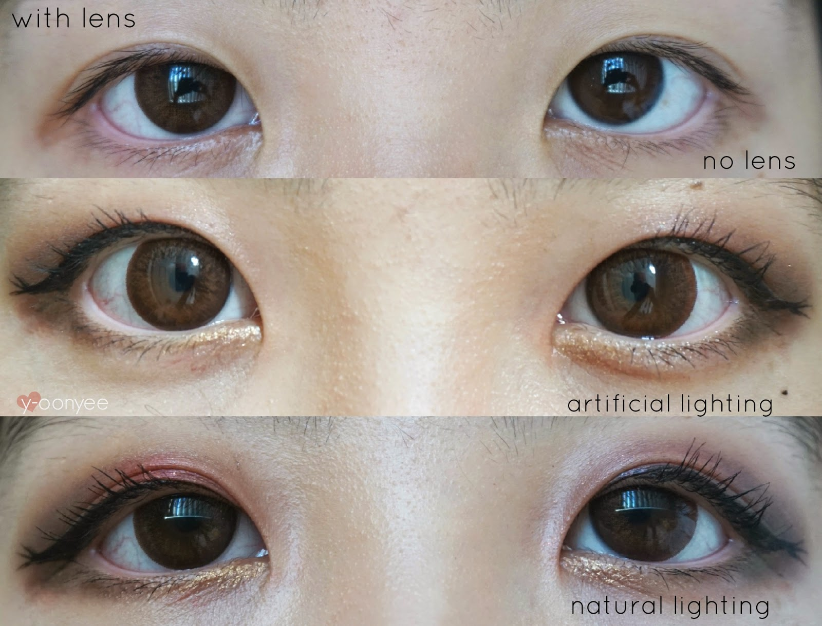 Geo Eyevelyn Circle Lens Brown