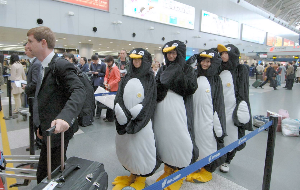 How penguins learned to fly