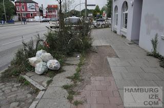 Stresemannstraße 227 - Biotopfläche im Radweg