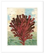 Seaside Prints & Notecards