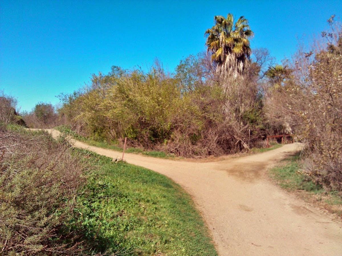 Guajome Park