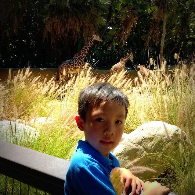 L.A. Zoo school field trip