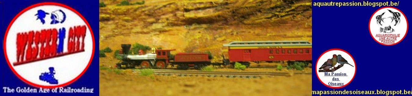WesterNCity N Scale Layout