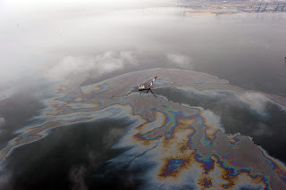 Leaked oil floating off the coast of Dalian, northeast China's Liaoning province.