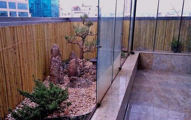 jardim japones pinheiro negro kuromatsu