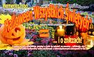"""""""Halloween Wszystkich Świętych"""". Memento mori ... i o zniczach"""