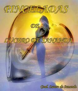 LIBRO: PINCELADAS DE LUCERO DE SANANDA