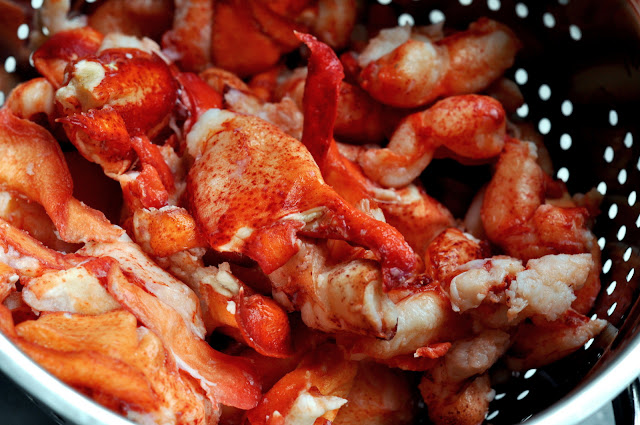 Premium Lobster Meat from Lobster Anywhere | Taste As You Go