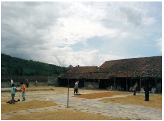 Keadaan cuaca di tempat penggilingan padi.