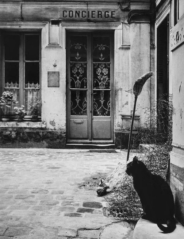 janine niepce chat paris