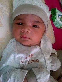 Muhammad Anas Hifdzan