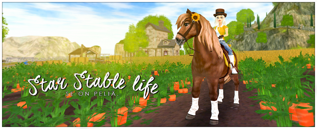 Star Stable life