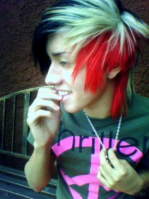 http://4.bp.blogspot.com/-7cm8JOUq-NE/TmRi0WLobxI/AAAAAAAANCY/Fj6PBRF5QhM/s1600/scene_emo_hairstyles_for_boys_Scene_Hair_Colors.jpg