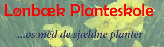 Lønbæk Planteskole